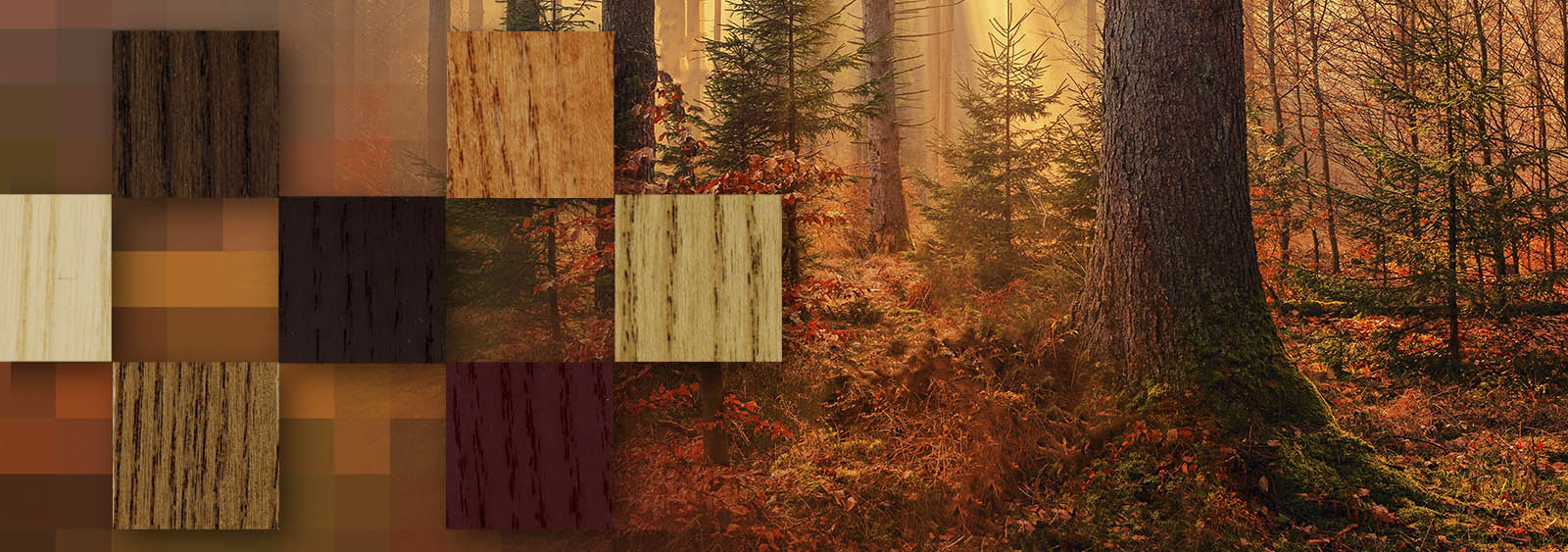 colores otoño protectores al agua