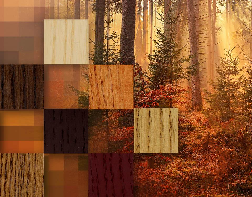gama de colores otoño de eurosalqui